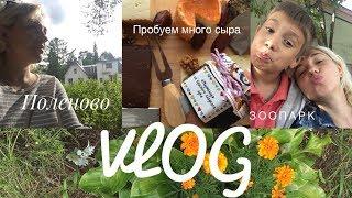 VLOG#44 ЗООПАРК/НОГТИ/ПОЛЕНОВО/МНОГО СЫРА