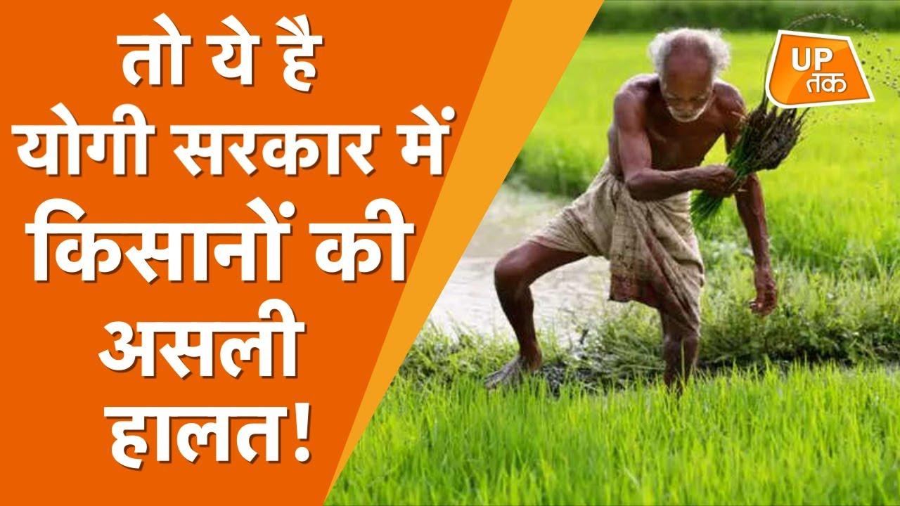 यूपी की योगी सरकार में किसानों का हाल बेहाल!