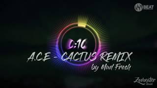 A.C.E(에이스) - 선인장(CACTUS) REMIX ver. SPECTRUM BEAT