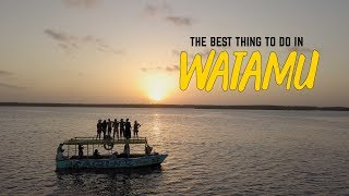 Wanderlust in Watamu, Kenya -  Seeing dolphins FOR THE FIRST TIME