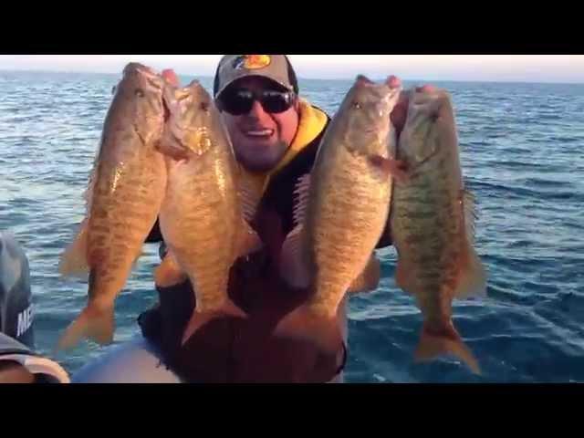 Fall Smallmouth Bass Fishing: Art of Fishing Guide Service