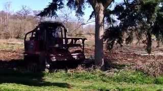 RT400 AHWI Mulcher felling large tree