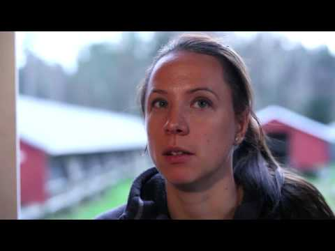 Investigating the welfare on farms in Sweden