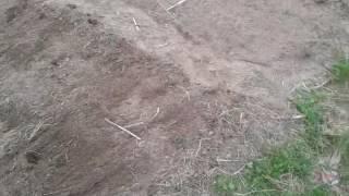 Лоплош готовые грядки(, 2016-05-15T17:10:50.000Z)