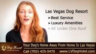 Dog Kennel Las Vegas | Call (702) 425-5470 | Las Vegas Nv Dog Kennel