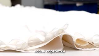 Ms Wedding (Стирка свадебного платья технологией PLEX)