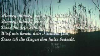 Des Baches Wiegenlied - Hannes Wader singt Schubert