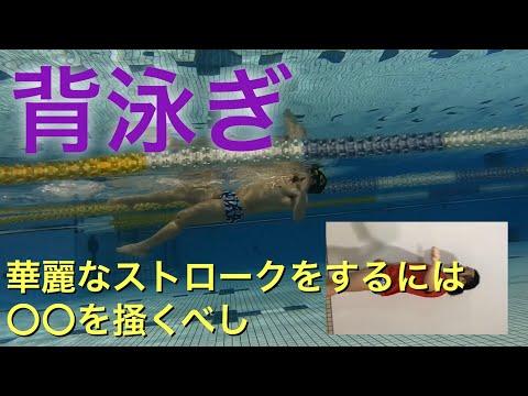 【 背泳ぎ 】華麗なストロークをする為には〇〇を掻くべし 【 水泳 】【 競泳 】