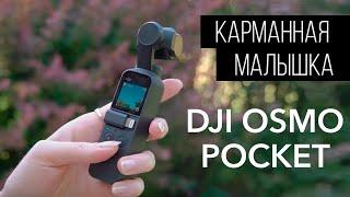 DJI OSMO Pocket. 7 месяцев спустя!