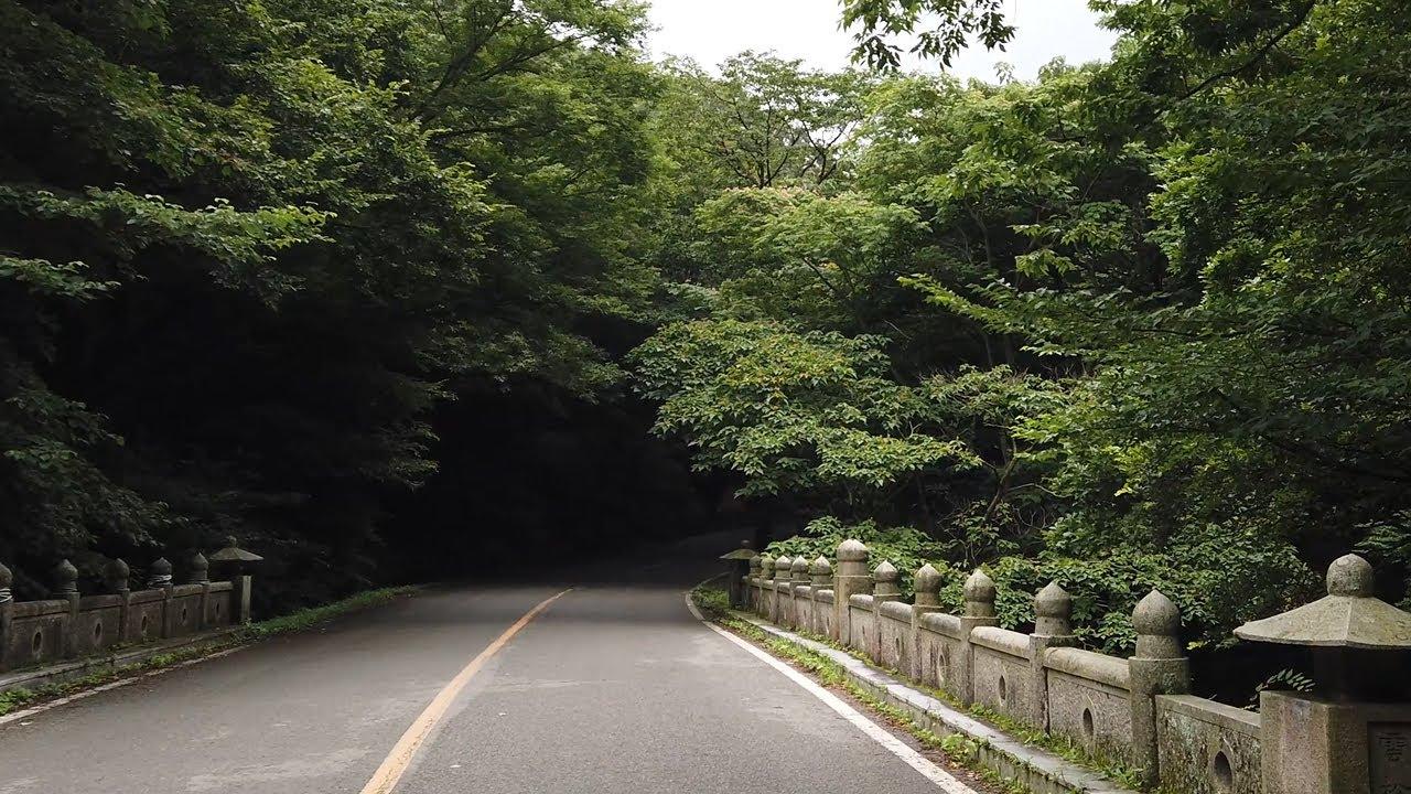 대흥사 입구 계곡 숲 트레킹 산책길 걷기