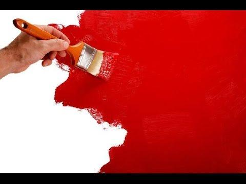 тест красок для покраски стен