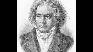 Sinfonía n.º 9, Beethoven, Primer Movimiento-Allegro ma non troppo, un poco maestoso.