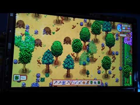 First gaming vid stardew valley