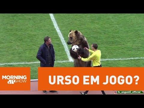 Rússia é Criticada Por Urso Em Jogo De Futebol