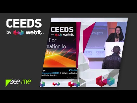 Bulgarian Artists For The Digital Transformation In The Music Industry - CEEDS'15 by Webit / SeeMe