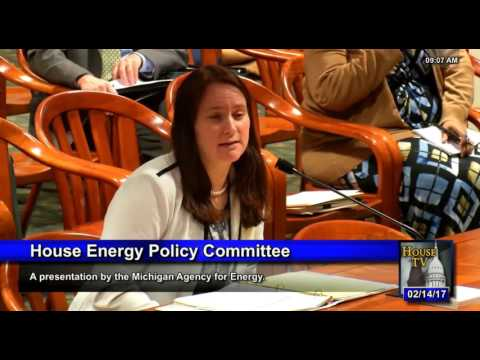 Michigan House Energy Committee 021417   Valerie Brader