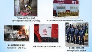 Виды и основные задачи пожарной охраны в Российской Федерации