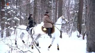 Kim mbi kalë në malin e shenjtë, sinjal për… ?
