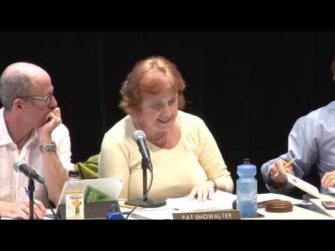 Mountain View City Council Meeting - July 14, 2016