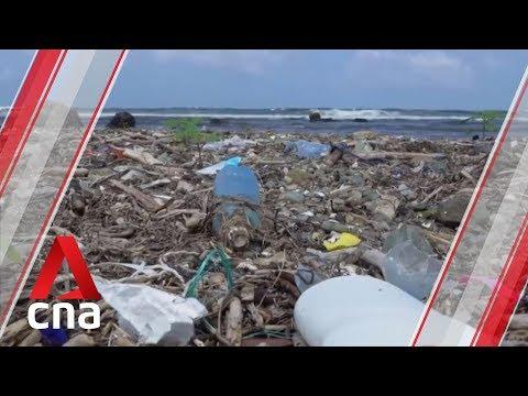 Observer on tackling marine pollution