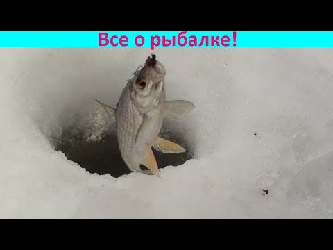"""""""Кислородный коктейль"""" для рыбы!!!"""