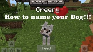 How to Name Your Dog:Minecraft Pocket Edition✔️(0.14.0 and older versions.)