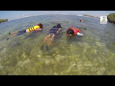 jogja-archive-|-snorkling-di-pantai-sadranan