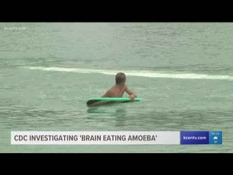 News Around The Lone Star State - KCENTV: BSR Surf Resort closes after surfer dies from 'brain-eating amoeba'