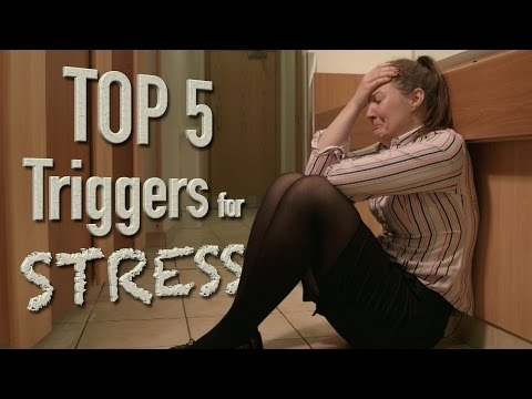Top 5 Triggers for stress in the workplace