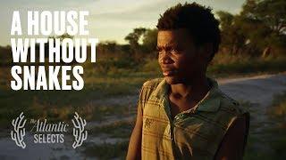 The Difficult Choice Facing Young Bushmen