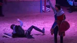 Medieval Knights Sword Fighting - Middle Ages Duels : Camelot