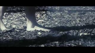 清水愛 - 発芽条件M