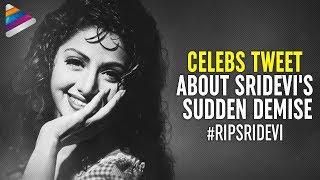 Celebrities about Sridevi's Sudden Demise | Actress Sridevi | #RIPSridevi | Telugu FilmNagar
