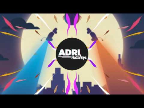 Hollywood Principle - Firework (Soh Remix)