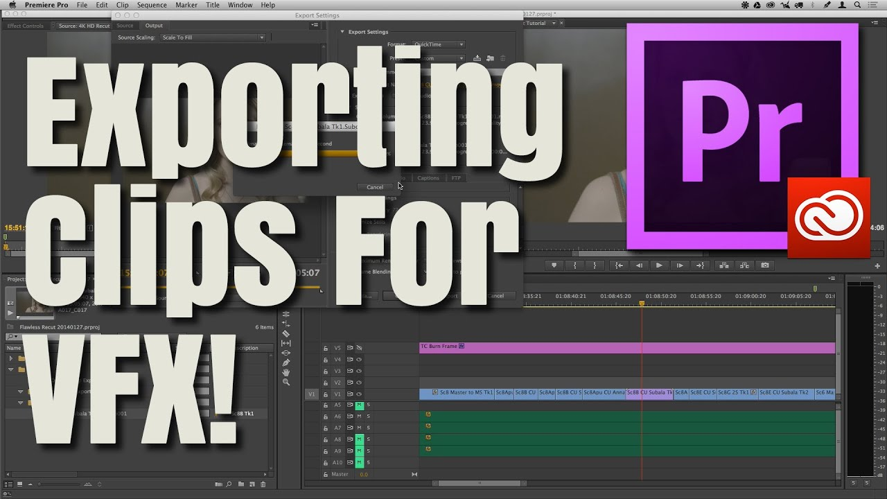How To Export Clips Out Of Premiere Pro CC (VFX, Colorist) | Perfect Post  Production