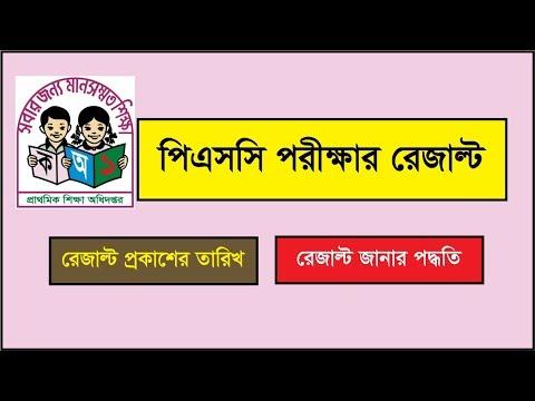 PSC Result 2019 Primary Result dperesult teletalk com bd