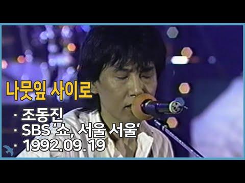 조동진  나뭇잎 사이로 Jo Dongjin  Between the Leaves 1992