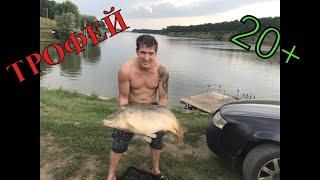 УРА BIGFISH ПОЙМАН ТРОФЕЙНЫЙ КАРП 20 Рыбалка на карпа