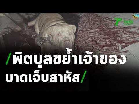 สุนัขขย้ำเจ้าของอาการสาหัส โดนกัดหลายจุด | 15-04-64 | ข่าวเที่ยงไทยรัฐ