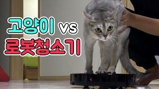 고양이 vs 로봇청소기?! 지니를 로봇청소기에 태워보자…