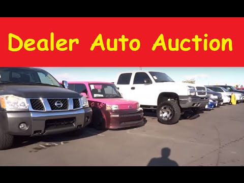 how to buy cars at wholesale auction