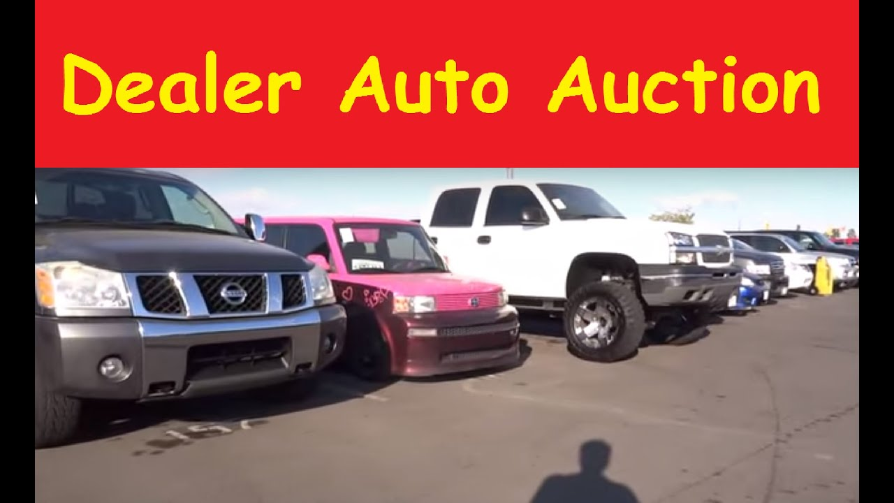 Wholesale Dealer Only Auto Auction Manheim Car Preview 1 Youtube