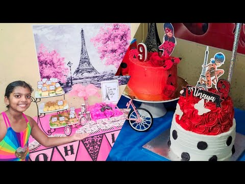 Vinaya's Miraculous and Paris Themed Birthday Party