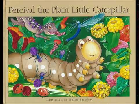 Percival, the Plain Little Caterpillar