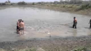 рыбалка бреднем на толстолоба 10кг(видео, добавленное с мобильного телефона., 2012-05-13T13:48:57.000Z)