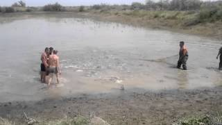 рыбалка бреднем на толстолоба 10кг(, 2012-05-13T13:48:57.000Z)