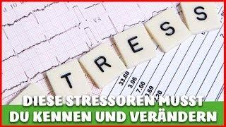 STRESS - Physikalische, emotionale und chemische STRESSOREN die DICH beeinflussen