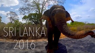 Sri Lanka backpacking 2016