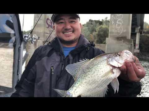 Fishing Lake Berryessa And Caught Rainbow Trout,Big Crappies & Bass