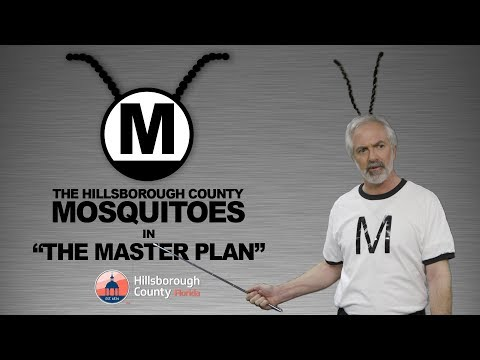 """The Hillsborough County Mosquitoes Star in """"The Master Plan"""""""